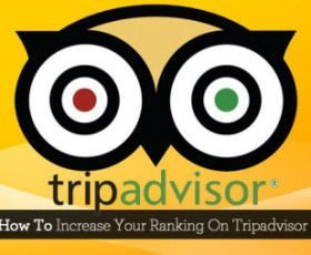 TripAdvisor Review Express